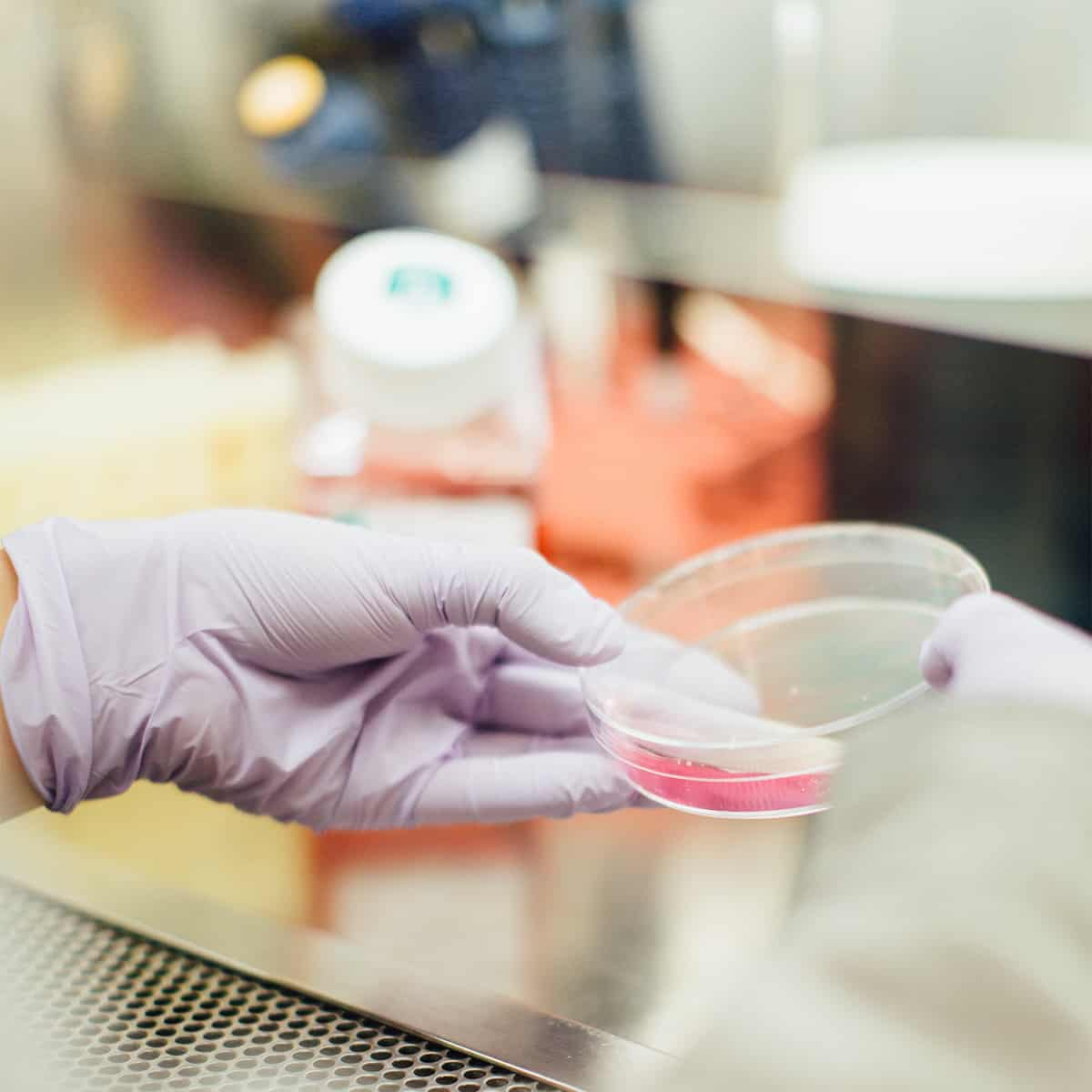 Advance your Assays with High Content Analysis